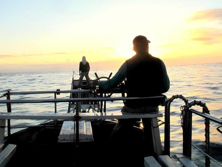 花莲出船海钓 力搏巨型白带鱼